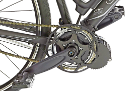 The Engine Adapts to the Bicycle