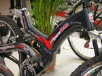 Chinese Bike Maker Skirts Anti-Dumping