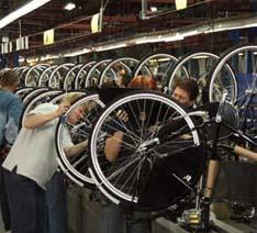 MIFA Reports 20% Revenue Drop