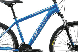 Bikes Sold To Investment Group