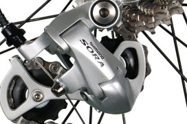 Shimano Is Biggest in Sports Business