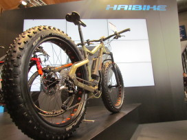 The Next Big Thing Is Here: e-MTBs!