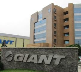 Giant受到中國市場下滑的拖累