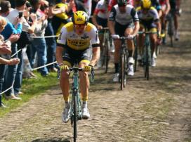UCI 暫停公路車賽事中使用碟煞,直到另行通知