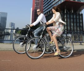 What Is Speed-Pedelecs' Best Place in Traffic?