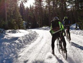 Nordic's E-Bike Sales Increase, But Markets Tend to Differentiate