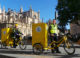 Bike europe continental e cargo bike 80x58