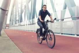 Perplexing Decision by European Commission: E-Bikes Must Be Insured